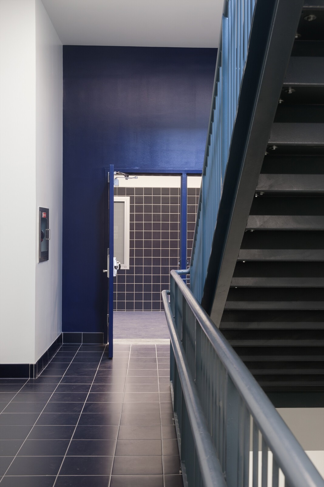 ENYFA Stairway Accent Color.