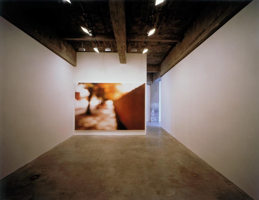Tanya-Bonakdar-Gallery-(1)