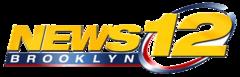 Officials break ground on Edenwald YMCA /News12 Bronx